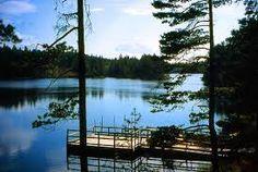Natuurreservaat Glaskogen bij Arjäng - ideaal om te kanoën