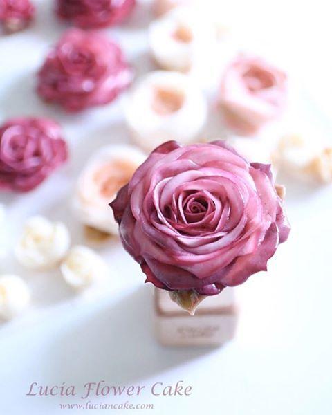 Lucia Butter Cream Flower Cake & Class www.luciancake.com Lucia's style _realistic buttercream rose  @lucia_0215 #instafood#instasg#indonesiacake#indonesiafood#cake#cakes#buttercream#buttercreamfrosting#cake#cakedesigner#flowercake#koreanbuttercream#flowercakeclass#luciacake#cakevideo#bakingclass#cakestagram#baking##buttercreamclass#buttercreamflowers#buttercreamflowercake#bakingclassjakarta#cakedecorating#koreanflowercake#wilton#christmascake#Christmas#rose#roses