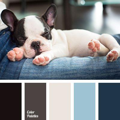 Color Palette #1760