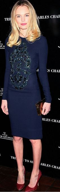 long sleeve form fitted dress