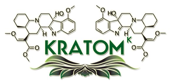 Our Kratom treatment is holistic; involving counseling to address spiritual, emotional & mental aspects of recovery http://www.renaissancerecoverycenter.com/addiction/kratom-addiction-treatment/