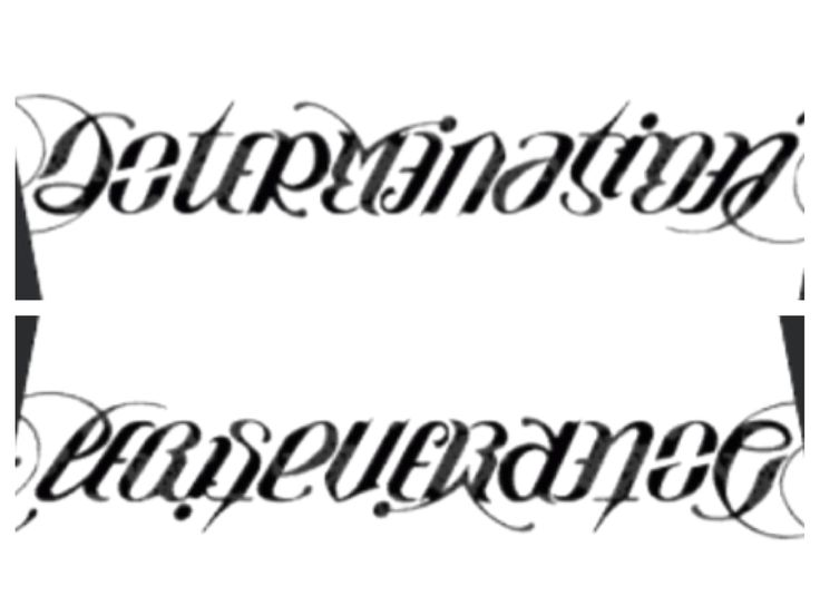 asymmetrical ambigram determination perseverance