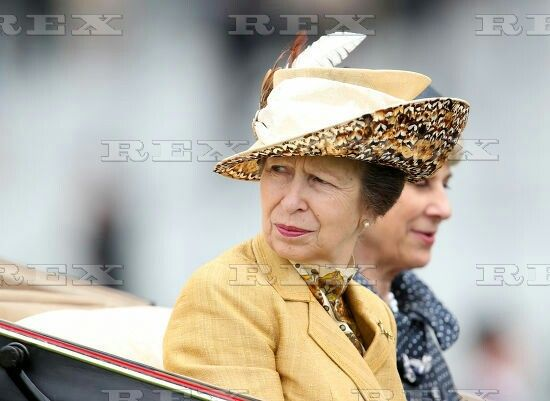 Horse Racing - Royal Ascot 2015 Day One Ascot Racecourse, High St, Ascot, United Kingdom - 11 Jun 2015  Princess Anne on Day One of Royal Ascot 2015  11 Jun 2015