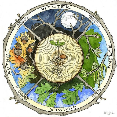 """Nature ed """"phenology Wheel"""", JanetMoore. Thanks Janet for a great weekend of Artistry and Forestry."""