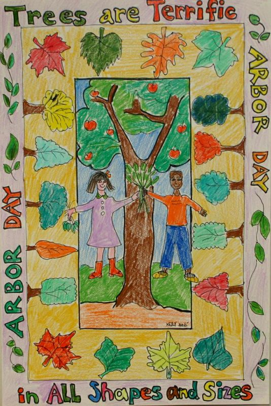 1000+ images about 4E April Theme: Arbor Day & Trees on ...