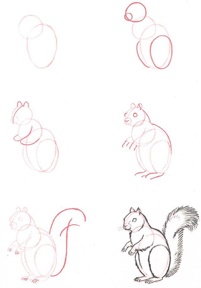 жён нарисовать разные картинки поэтапно существу данная