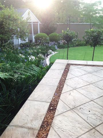Open terrace with Bay Leaf Standards and Agapanthus in the background