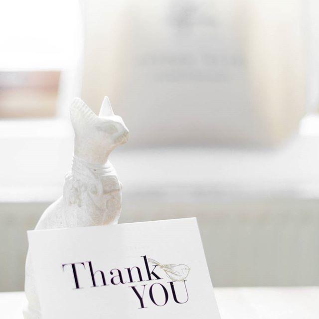 Fan de leurs créations 💛 @cottonbirdfr -      #thankyou #fairepartcreatif #fairepartmariage #ilovecottonbird #photolumineuse #modernwedding #wedding2018 #bridetobe #fineartphotography #invitation #papeterie #cartederemerciement #louloulouphotography #paris #chat #stationery #mariage #jolismoments #wedding #surprise #fairepart #savethedate  www.louloulouphotography.com