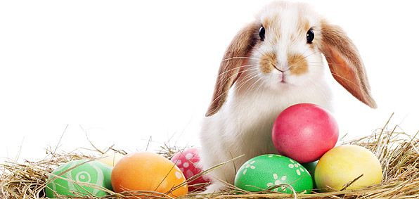 Easter, it's Pagan roots and what it means to the Believer.