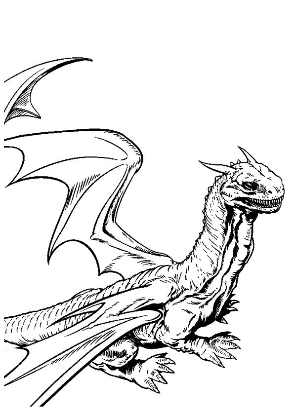 17 best images about coloriages de dragons on pinterest coupe king and belle - Dessins dragon ...