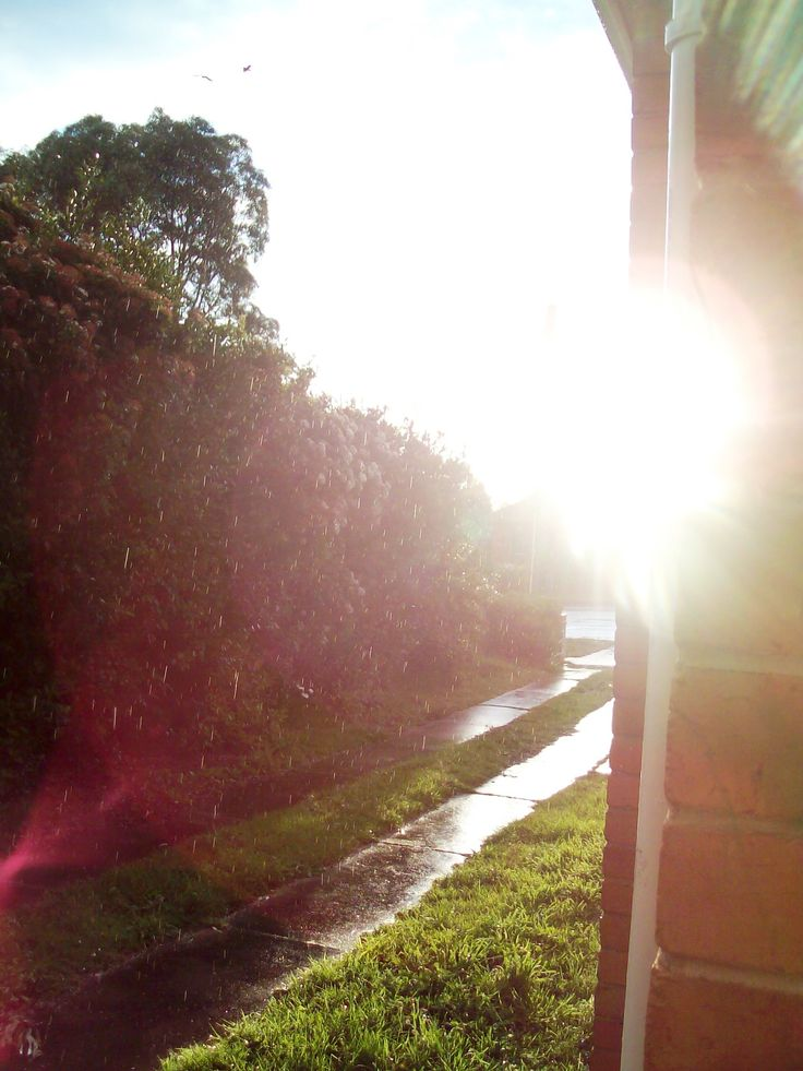 A picture I took in the late afternoon whilst raining. It was worth getting wet over.