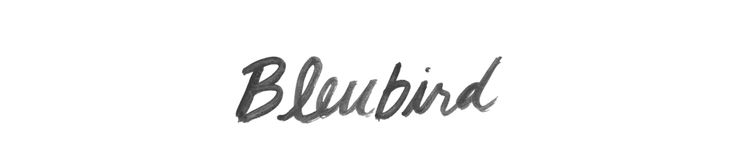 BLEUBIRD - DIY - FLOWER CROWN. - BLEUBIRD