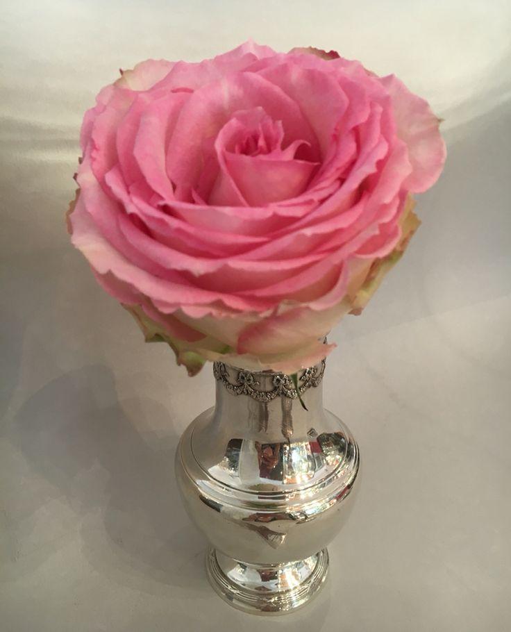 Une jolie rose éphémère, éclose,  Dans un lit d'argent immuable, dans le temps. Symboles d'amour et d'éternité.