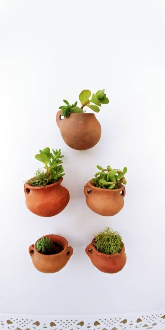 3 Miniature Clay Planters 1 Tall Air Plants Succulent Plants Holder Clay Planters Plant Pot Diy Miniature Clay Pots