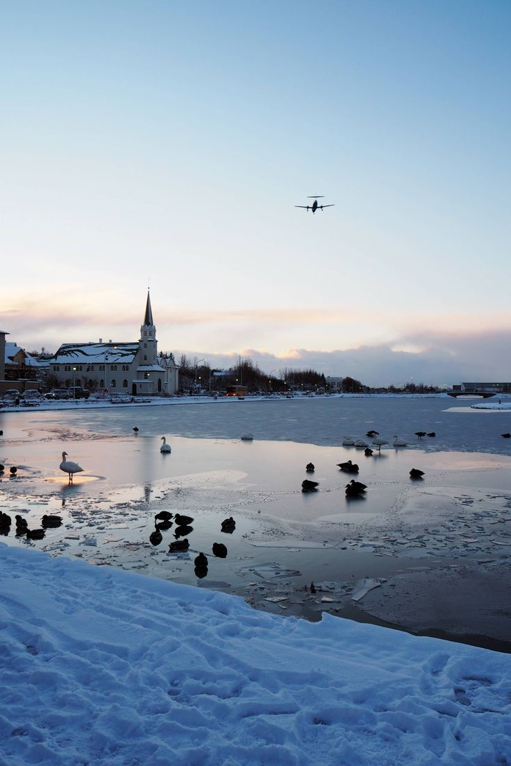 Iceland in 4 Days: An Iceland Guide - Inthefrow