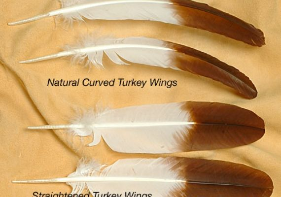 How to Straighten and Trimm Feathers - Craft Tutorial - PowWows.com - Native American Pow Wows
