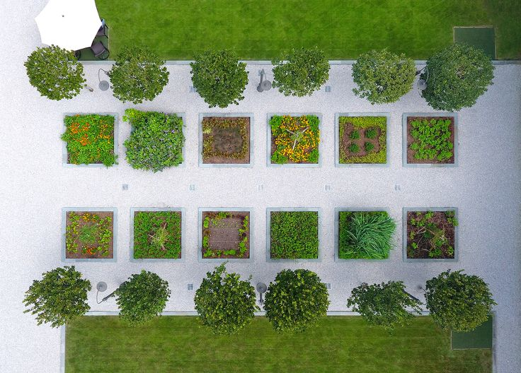 An Aerial Of The Herb Garden And Shows The Zoro Zoysia Lawn Surrounding The  Tee Boxes