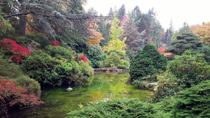 Kubota Garden Seattle Wa Free Admission Travel