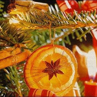 Dried orange slices and spices (cinnamon sticks!) in the tree... Super pretty, and I'll bet it smells yummy, too.