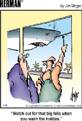 Underwater Window Cleaning Here is some Thursday funnies!