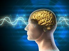 Improving our Memory - Online Continuing Education