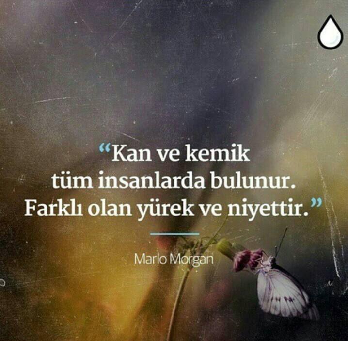 Kan ve kemik tüm insanlarda bulunur. Farklı olan yürek ve niyettir.   - Marlo Morgan