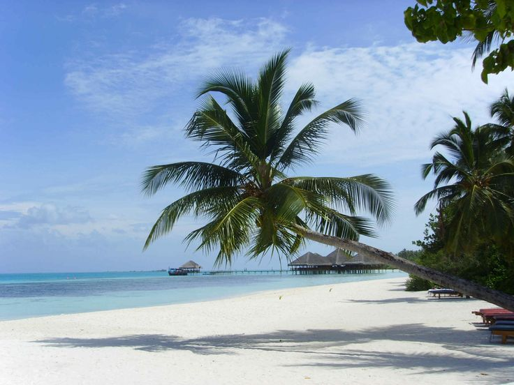 Lohifushi, Maldives.  Visited 2003   (Google 4.351502, 73.617767)