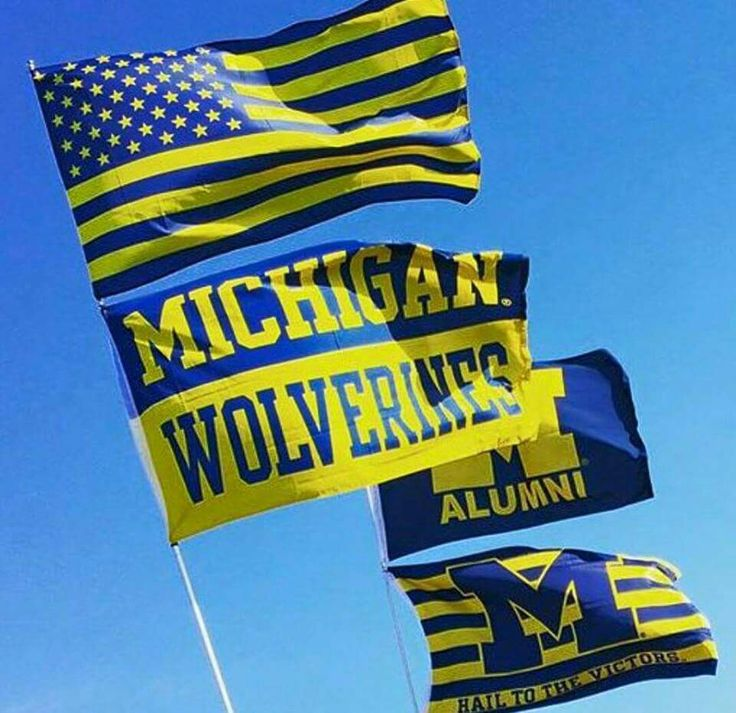 820 Best Images About M Go Blue On Pinterest Michigan