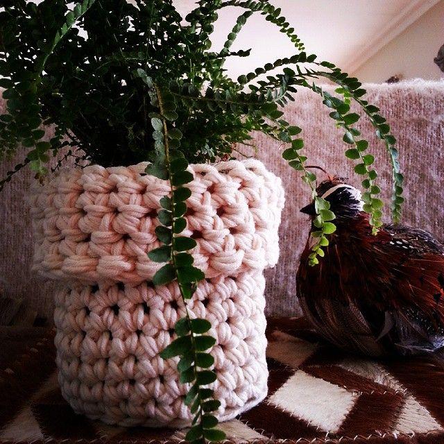 Chunky style crochet planter by @wolfandyarzz #crochet #crochetaustralia #crochetaddict #fibre #wool#interiorstyle #interior #decor #interiordecor #planter#plants #indoorplants#bohodecor #bohostyle #bohostyling #rustic #rusticdecor #rusticstyling #wolfandyarzz #neutral #natural #natureselements#naturaldecor#naturalstyling#naturalelements#wool#crochetcreations#crochetcrazy#crochetcontainers #crochetpots#potplants