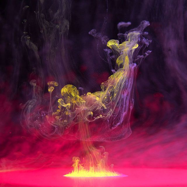 Mark Mawson - Aqueous, 2012 - colored ink in water