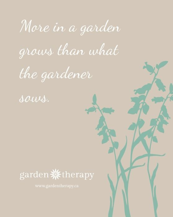 More In A Garden Grows Than What The Gardener Sows