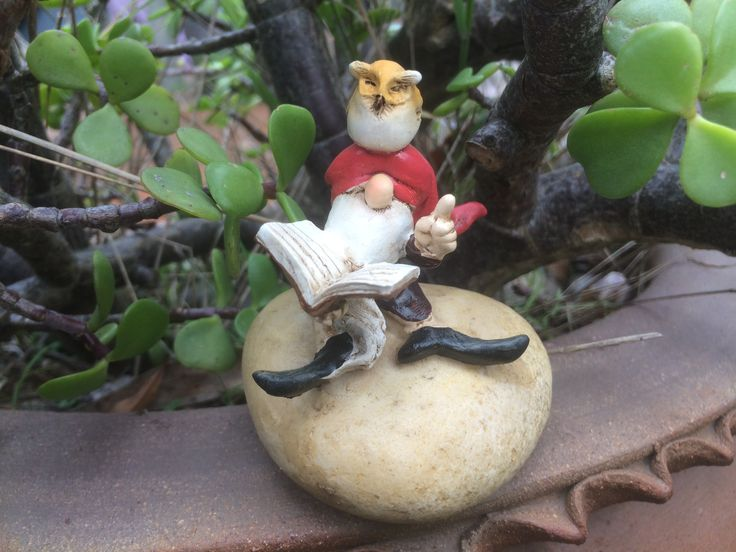 Garden gnome sitting on a rock reading a book with an owl