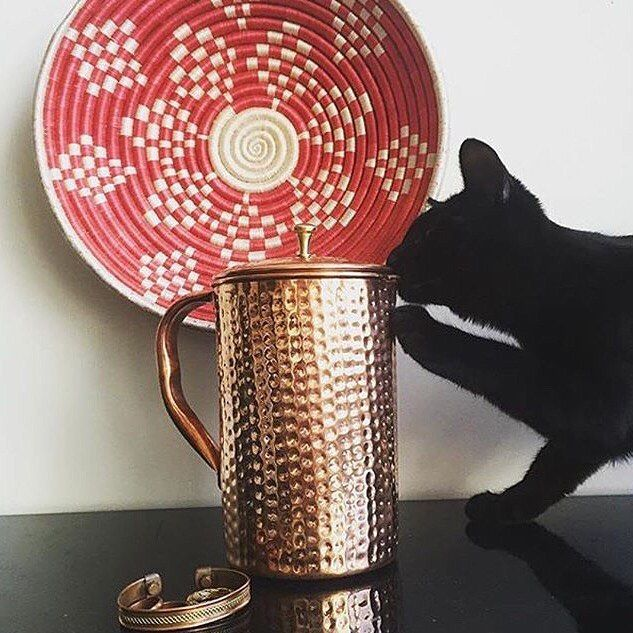 Kitty loves her new copper water pitcher! Learn about the incredible health benefits of drinking from a copper pitcher and order yours at shantiva.com!  #ayurvedic #ayurveda #holistic #holistichealth #holisticnutrition #holistichealing #holisticliving #holisticlife #holisticbeauty #holisticlifestyle #holisticwellness #holisticmedicine #cleanse #healthandwellness #hydration #yogalife #detox #detoxwater #detoxify #alkaline #alkalinewater #ayurvedicmedicine #yogaholic #waterislife #drinkwater…
