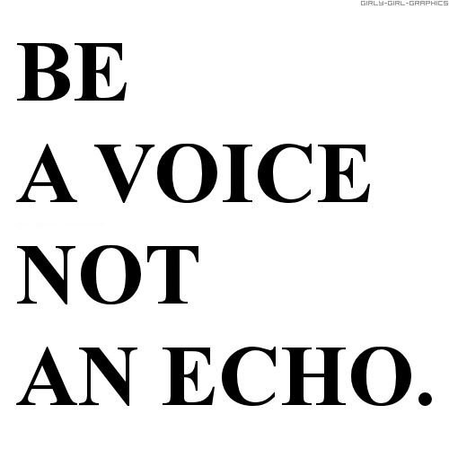 voice vs echo