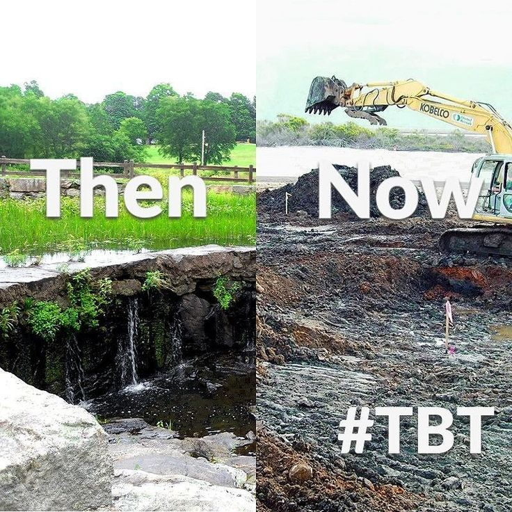 We can't let the man keep us down. We need to stand up to them. They get excavators and bulldozers but you know what we get? We got spirit a fighting one. A hot burning spirit that can't be put out. And determination trumps all #tbt #throwbackthursday #parks #green #movement #activism #riseup #conservation #EarthIsMoreThanJustDirt