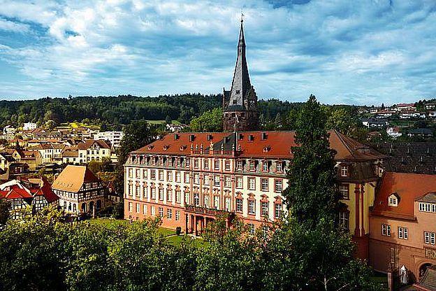 Schloss Erbach im Odenwald Kreis, Hessen. © Stadtmarketing, Tourismus, Wirtschaftsförderung und Märkte