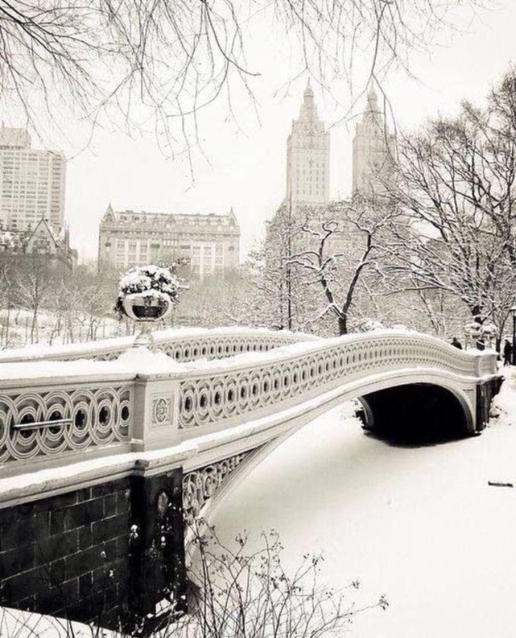 www.joliesse.ru   вдохновение Нью-Йорк парк Центральный парк зима снег
