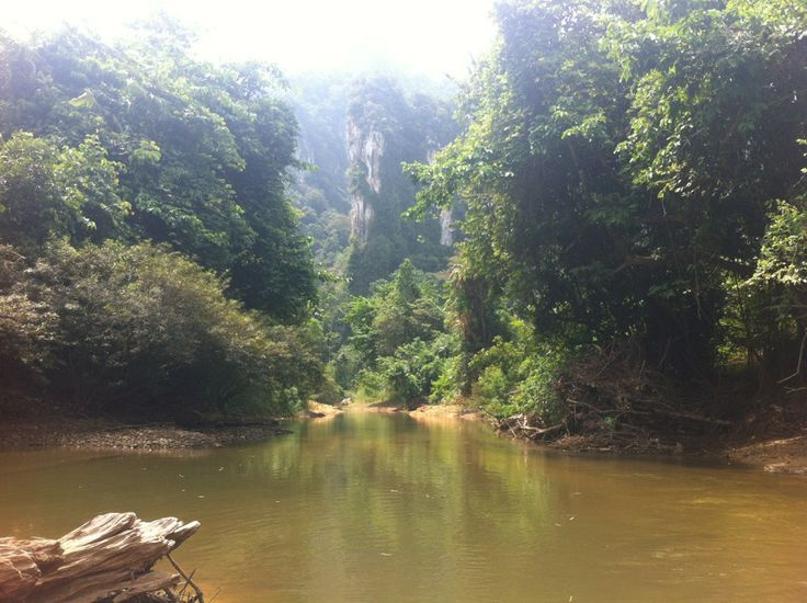 The Khao Sok National Park is a stunning wildlife reserve, filled with jungles and lakes and home to a diverse selection if wildlife including elephants and gibbons.