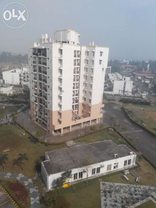 Shree Bajrang Associates is Residential Property For Sale in Bahadurgarh, Providing best Residential Property For Rent in Bahadurgarh,original booking in Omaxe Bahadurgarh