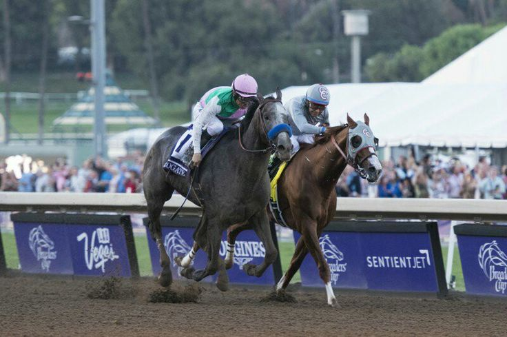 Another close finish in the 2016 Breeders'Cup; Arrogate beats California Chrome