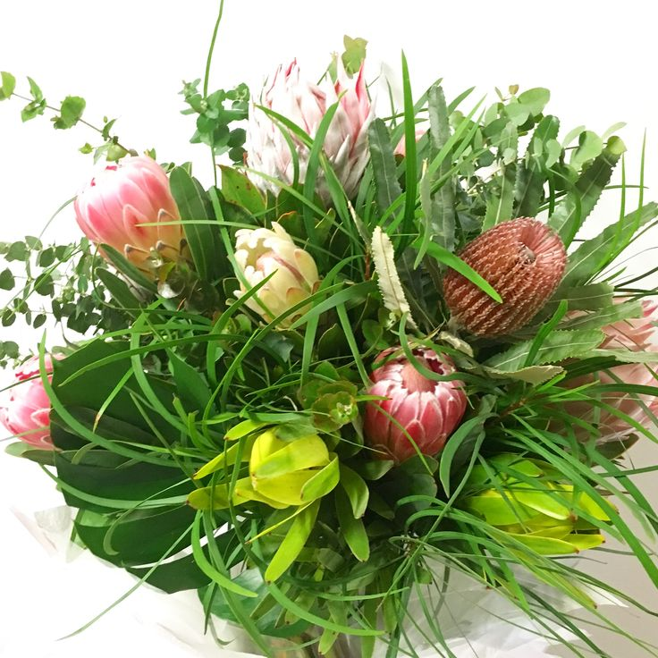 Can't go wrong with Proteas!