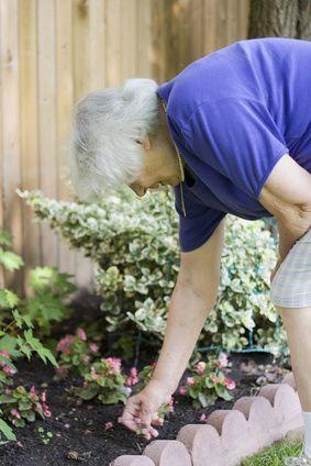 What Is The Best Exercise Program For Seniors