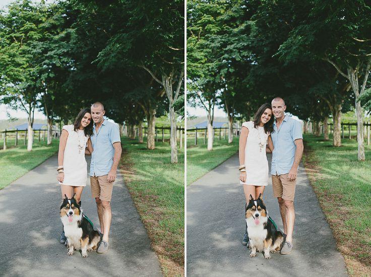 #engagement #wedding #couplesshoot #bride #bridetobe #groom #groomtobe #inlove #wearethetsudons #photography #engagementphotoshoot #weddingphotography #farm #goldcoast #gettingmarried #tree #hinterland #bordercollie #collie