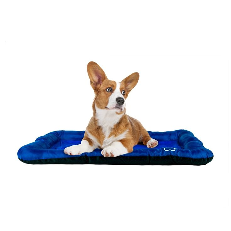 Best 25 Dog Cooling Mat Ideas On Pinterest Cooling Pad
