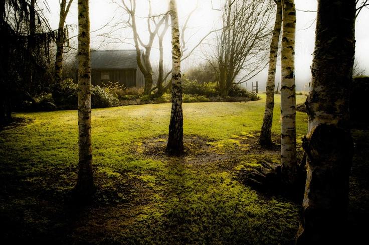 Wychwood Gardens