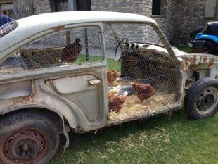 Chicken coop made out of old car.  Is that an ancient VW??  I think the girls like it!