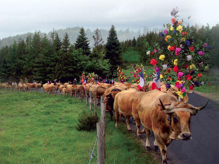 Bienvenue sur le site officiel du Comité Départemental du Tourisme de l'Aveyron