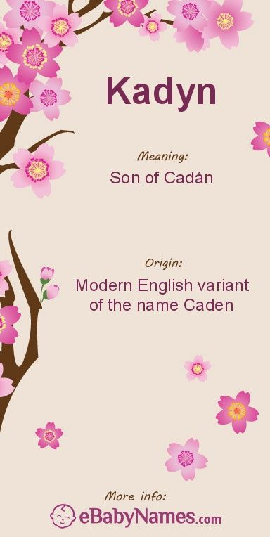 The origin & meaning of the name Kadyn