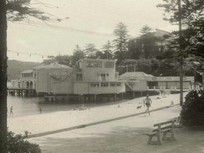Marineland in Manly in the Northern Beaches region of Sydney in 1964.