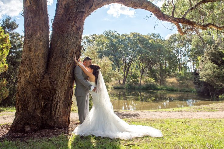 Wedding Photographer - Candid Photos of a Lifetime  The Bride & Groom